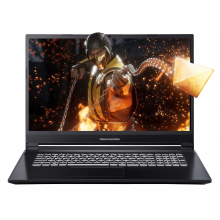 "Dream Machines G1050 i7 17.3""/GTX1650/1 To M.2 PCIe/8 Go"