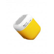 KAKKOII Pantone Spectra Yellow